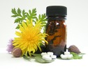 Thumbnail Energy Healing 101: Pranic, Tantric, and Reiki